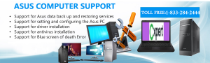 ASUS Computer TollFree 18332842444 Number USA