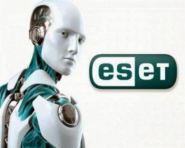 Esetcomusactivate  Download  Activate  esetcomsupport
