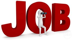 Job Consultancy in Udaipur  Top Placement Agency in Udaipur