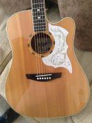 Canadian Winter Season 6 String RH Semi Acoustic guitar at UK Free Classified Ads