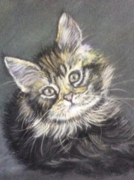 Awesome PET PORTRAITS Available at UK Free Classified Ads