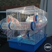 Gerbal Hamster Cage for Sale at UK Free Classified Ads