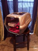 Pet Carrier for Sale at UK Free Classified Ads