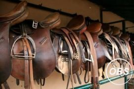 Tack Sale for Sale at UK Free Classified Ads