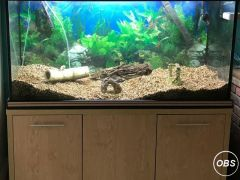 Tropical Fish Tank with many extras for Sale at UK Free Classified Ads