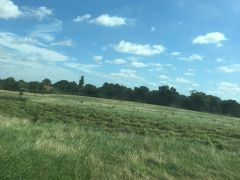 Large field on hill for sale in Surrey rh7 UK Free Classified Ads