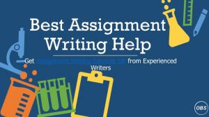 assignment provider uk