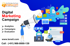 Best Digital Marketing Campaign