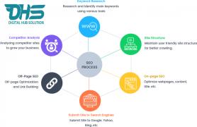 Digital Hub Solution  Search Engine Optimization Services