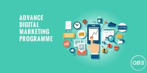 Digital Marketing Courses  Training Institute in Bangalore