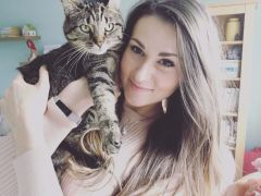 Insured Pet Sitter  Cat Sitter  Pet Sitting  Poole Lilliput Sandbanks Bournemouth