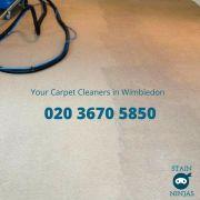 Professional carpet cleaning Wimbledon