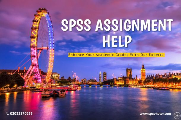 SPSS Assignment Help by UK Writers