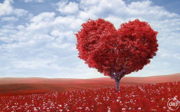 Wazifa For Love  Maulana Haider Ali